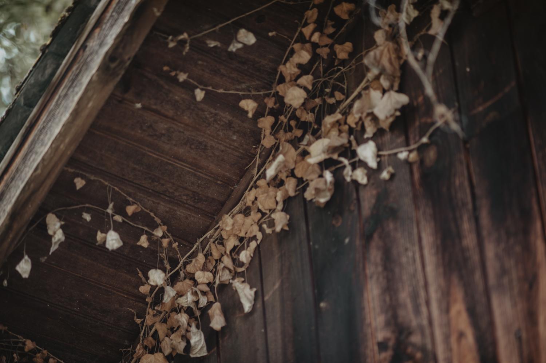 Cabane en bois pour une séance de couple mariage.