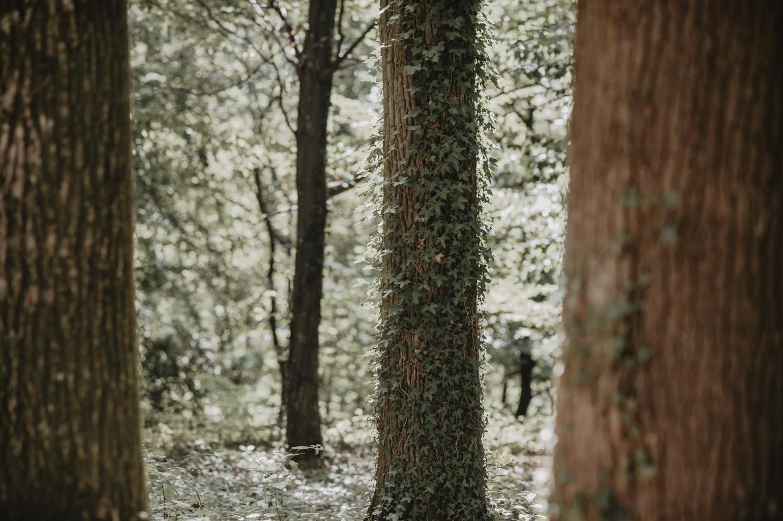 Mariage dans les bois, nature et simple.