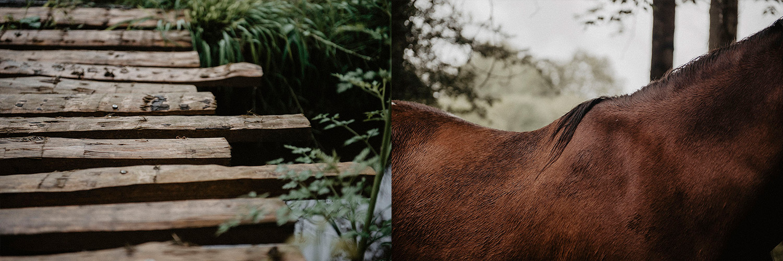 Inspiration mariage rustique et folk, photographe lifestyle pour votre reportage photo mariage dans le sud-ouest de la France.