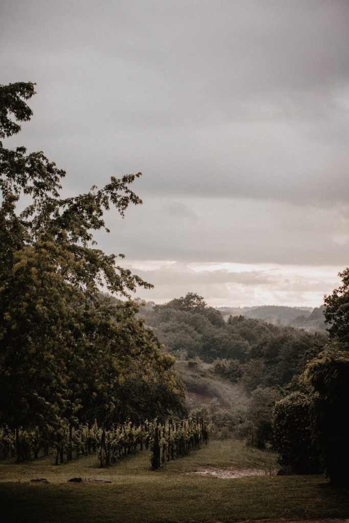 Vue sur les vignes depuis la salle de réception au Domaine ed Lucain, près de Pau, 64, Pyrénées